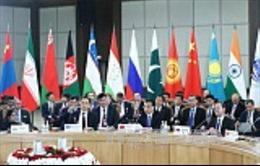 Các nước SCO tổ chức diễn tập chống khủng bố trên không gian mạng