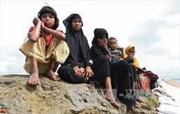 UNHCR khuyến cáo không vội vã hồi hương người Rohingya
