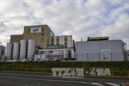 Pháp thu hồi hàng tấn sữa của Lactalis