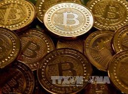 Cổ phiếu của một công ty bitcoin bị đình chỉ do nghi vấn thao túng thị trường
