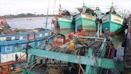Bạc Liêu triển khai các giải pháp hạn chế ảnh hưởng của bão Tembin