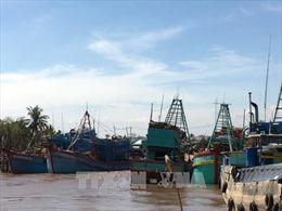 Các địa phương khẩn trương phòng chống bão Tembin