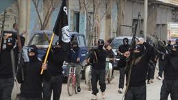 Liên quân Mỹ tiết lộ số phiến quân IS còn cố thủ tại Syria và Iraq