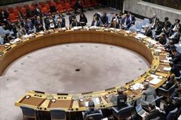 Hội đồng Bảo an Liên hợp quốc có 6 thành viên mới