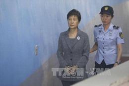 Bà Park Geun-hye bị cáo buộc nhận hối lộ hàng triệu USD từ Cơ quan tình báo quốc gia