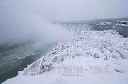 Canada ban bố cảnh báo 'bom bão tuyết' đang đến gần