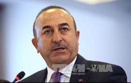 Ngoại trưởng Thổ Nhĩ Kỳ: Quan hệ Ankara - Washington ở mức xấu nghiêm trọng