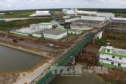 Giám sát việc xử lý chất thải của Nhà máy Giấy Lee&Man