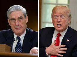 Luật sư chuẩn bị cho khả năng Tổng thống Trump bị thẩm vấn