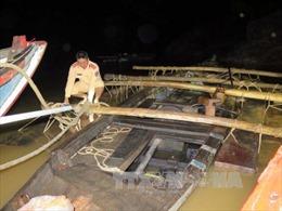 Giả ngư dân, bắt quả tang vụ vận chuyển khối lượng lớn gỗ trái phép trong đêm
