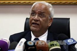 PLO kêu gọi tổ chức hội nghị quốc tế về việc thành lập nhà nước Palestine