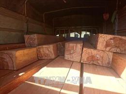 Phú Yên: Tạm giữ xe tải chở gỗ không rõ nguồn gốc