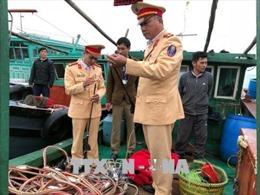 Quảng Ninh bắt giữ 7 tàu khai thác thủy sản trái phép