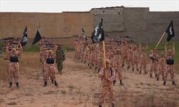 Al-Qaeda lôi kéo, tuyển mộ phiến quân của IS