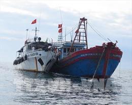 Phạt nặng tàu cá khai thác trái phép tại vùng biển nước ngoài