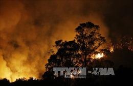 Cháy rừng ở Mỹ và thời tiết giá lạnh tại Trung Quốc