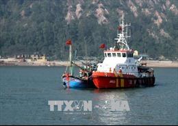 Cứu sống 12 thuyền viên gặp nạn khi tìm kiếm tàu cá trôi trên biển