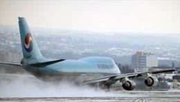 Hàn Quốc: Tuyết dày đặc, Sân bay Jeju hủy, hoãn 180 chuyến bay