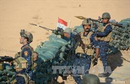 Iraq đẩy mạnh truy quét tàn quân IS