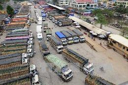 Lạng Sơn giải quyết tình trạng dồn ứ nông sản tại các cửa khẩu