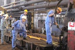 Thái Nguyên đẩy nhanh tiến độ di dời các cơ sở công nghiệp gây ô nhiễm