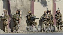 Afghanistan không kích phá hủy trung tâm chỉ huy của Taliban