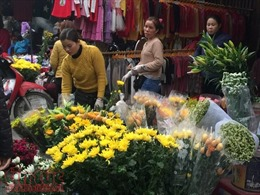 Cận Tết, giá hoa tươi tăng chóng mặt