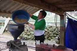 Đồng bào Mông thoát nghèo nhờ vay vốn chính sách