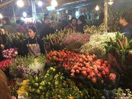 Chợ hoa Quảng Bá, Hà Nội họp xuyên đêm những ngày cận Tết