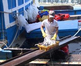 Hỗ trợ ngư dân bám biển dịp Tết Nguyên đán