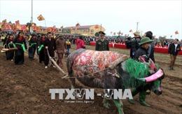 Khai hội Tịch điền Đọi Sơn năm 2018