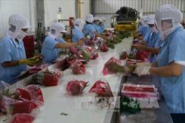 Xuất khẩu nông lâm thủy sản đầu năm thắng lớn