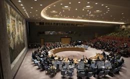 HĐBA LHQ thông qua nghị quyết yêu cầu lệnh ngừng bắn ở Syria