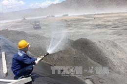 Yêu cầu tăng cường bảo vệ môi trường tại Trung tâm Điện lực Vĩnh Tân