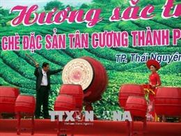 Lễ hội 'Hương sắc Trà xuân - vùng chè đặc sản Tân Cương'