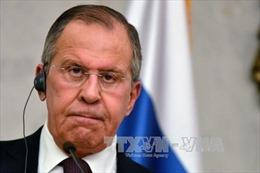 Nga đánh giá tính khả thi của lệnh ngừng bắn ở Syria