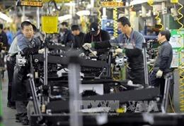 Hàn Quốc sẽ cắt giảm giờ làm việc hợp pháp