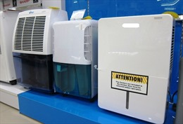 Trời nồm ẩm cả tuần không hết, nên mua loại máy hút ẩm nào?