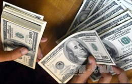 Chuyên gia kinh tế: Không lo ngại khi tỷ giá tăng
