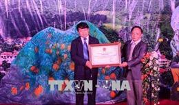 Điện Biên công bố di sản văn hóa phi vật thể quốc gia với nghệ thuật của người Mông hoa
