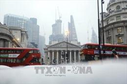 Tuyết lạnh băng giá gây thiệt hại nặng nề cho nền kinh tế Anh