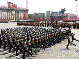 Triều Tiên không phải đối tượng được Nga bảo vệ trước cuộc tấn công hạt nhân