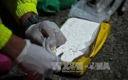 Colombia và Brazil thu giữ lượng lớn cocaine