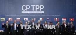 Hãng Moody's: Malaysia là nước hưởng lợi nhất từ CPTPP