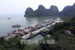 Tạm đình chỉ 3 tàu du lịch vi phạm trên vịnh Hạ Long