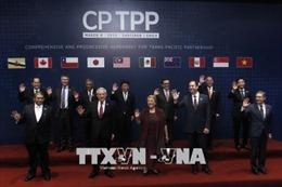 Ký kết CPTPP: Bộ trưởng Trần Tuấn Anh gặp song phương với đại diện Nhật Bản, Chile và Mexico