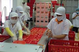 Viet Foods giới thiệu nhà máy sản xuất thực phẩm theo tiêu chuẩn quốc tế