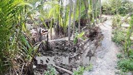 Kênh rạch trong Khu Du lịch cấp quốc gia Thới Sơn sạt lở nghiêm trọng