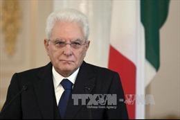 45 năm quan hệ ngoại giao Việt Nam – Italy: Tổng thống Italy gửi điện mừng đến Chủ tịch nước Trần Đại Quang