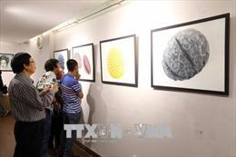 Khai mạc Triển lãm Mỹ thuật của các họa sĩ châu Âu tại Đà Nẵng
